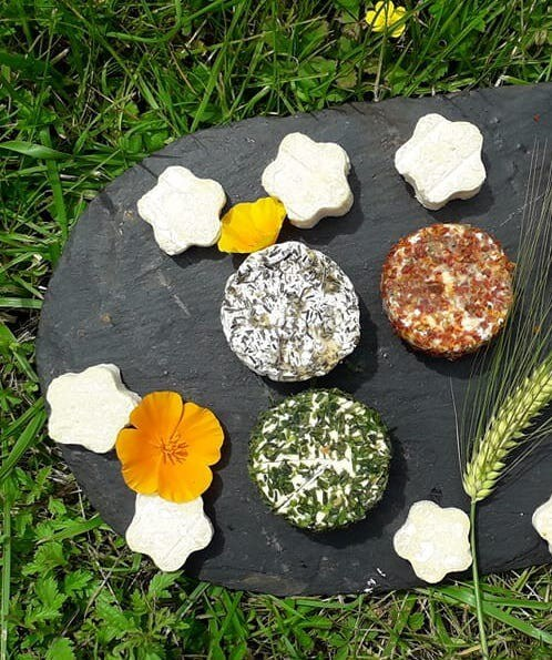 Fromage ronde des saisons Tomate