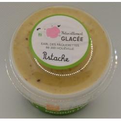 Crème glacée Pistache Bio