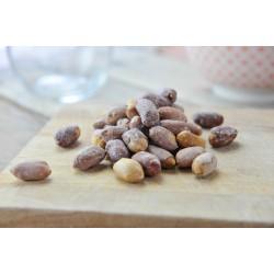 Arachides grillées salées Bio