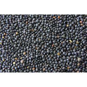 Lentilles Beluga Noires Bio. Les 250g