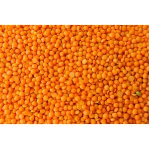 Lentilles Corail Bio. Les 250g