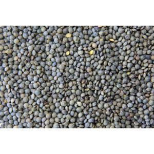 Lentilles Vertes Tradition. Les 250g