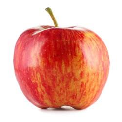 Pomme Reine des reinettes. Le kg