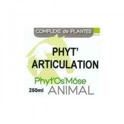 Phyt' articulation animal