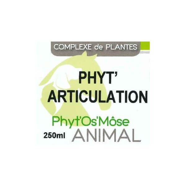Phyt' articulation animal