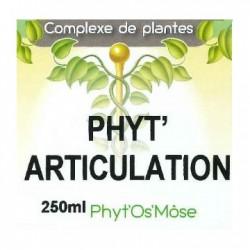 Phyt' articulation humain
